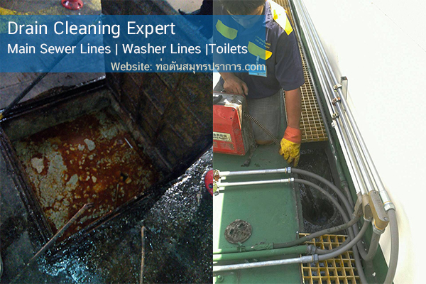 Drain Cleaning Expert